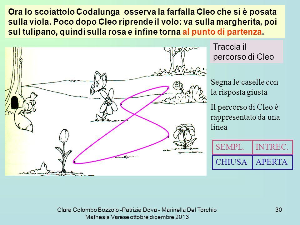 Clara Colombo Bozzolo -Patrizia Dova - Marinella Del Torchio Mathesis Varese ottobre dicembre 2013 30 Ora lo scoiattolo Codalunga osserva la farfalla