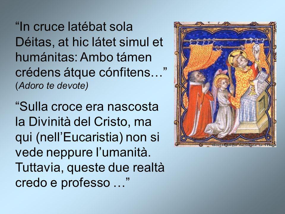 """In cruce latébat sola Déitas, at hic látet simul et humánitas: Ambo támen crédens átque cónfitens…"" (Adoro te devote) ""Sulla croce era nascosta la Di"
