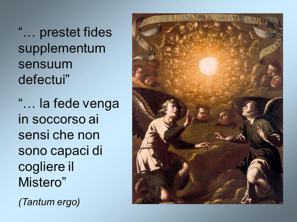 """""""… prestet fides supplementum sensuum defectui"""" """"… la fede venga in soccorso ai sensi che non sono capaci di cogliere il Mistero"""" (Tantum ergo)"""