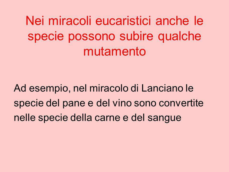 Nei miracoli eucaristici anche le specie possono subire qualche mutamento Ad esempio, nel miracolo di Lanciano le specie del pane e del vino sono conv