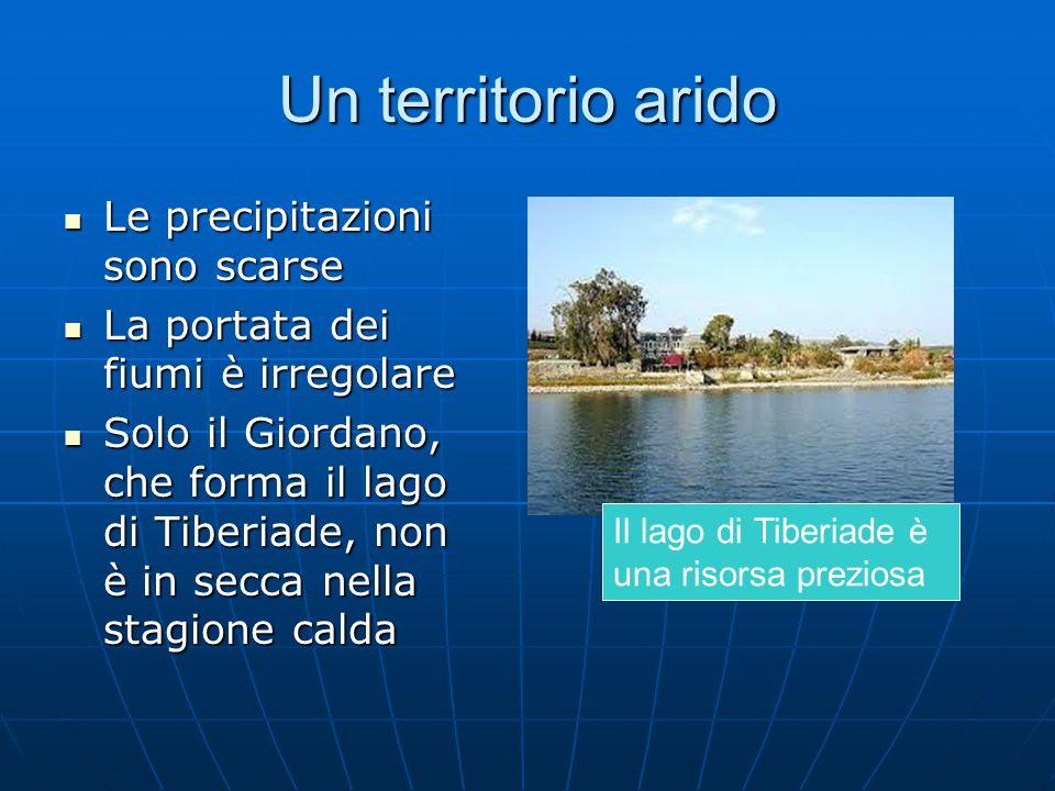 Un territorio arido Le precipitazioni sono scarse Le precipitazioni sono scarse La portata dei fiumi è irregolare La portata dei fiumi è irregolare Solo il Giordano, che forma il lago di Tiberiade, non è in secca nella stagione calda Solo il Giordano, che forma il lago di Tiberiade, non è in secca nella stagione calda Il lago di Tiberiade è una risorsa preziosa