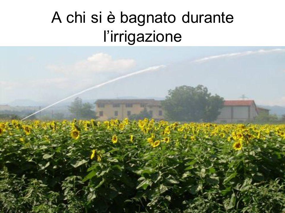 A chi si è bagnato durante l'irrigazione