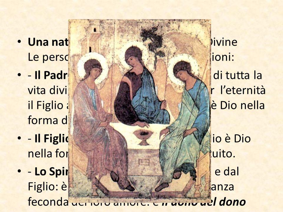 Una natura divina – tre le Persone Divine Le persone sono distinte per le relazioni: - Il Padre (eterno generatore), fonte di tutta la vita divina, ge
