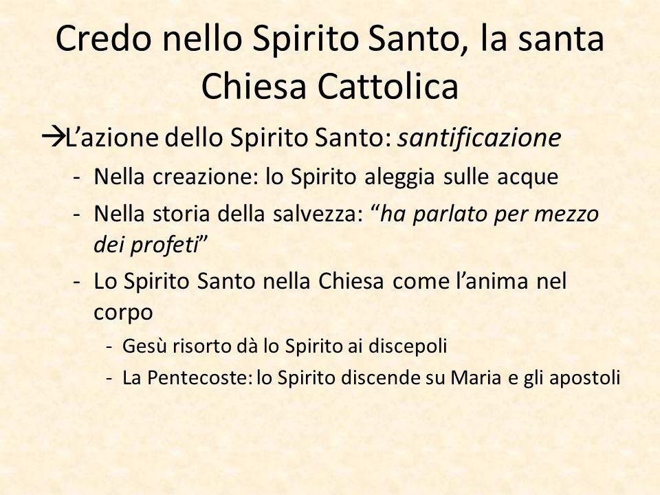 Credo nello Spirito Santo, la santa Chiesa Cattolica  L'azione dello Spirito Santo: santificazione -Nella creazione: lo Spirito aleggia sulle acque -