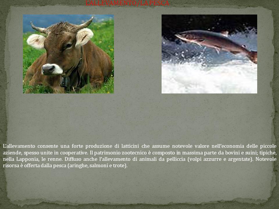 L'ALLEVAMENTO/LA PESCA L'allevamento consente una forte produzione di latticini che assume notevole valore nell'economia delle piccole aziende, spesso