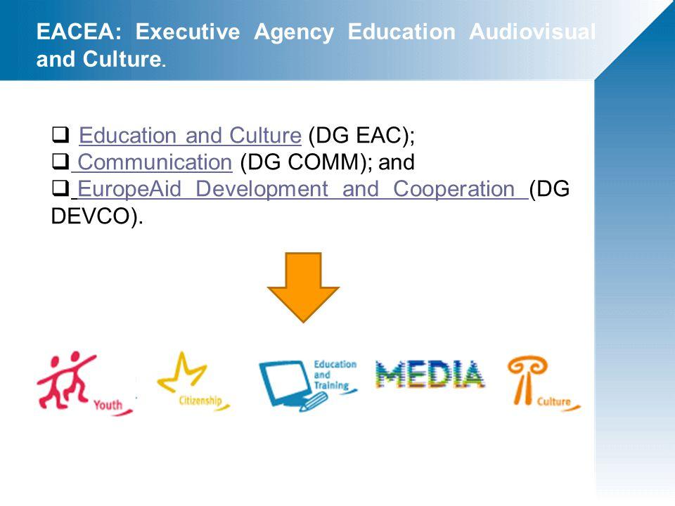  Lifelong Learning Programme : Comenius, Erasmus, Leonardo da Vinci, Grundtvig, Jean Monnet;  Erasmus Mundus 2009-2013;  Tempus  Cooperazione Bilaterale  Intra ACP  Media  Culture  Europa per i Cittadini  Gioventù in azione PROGRAMMI