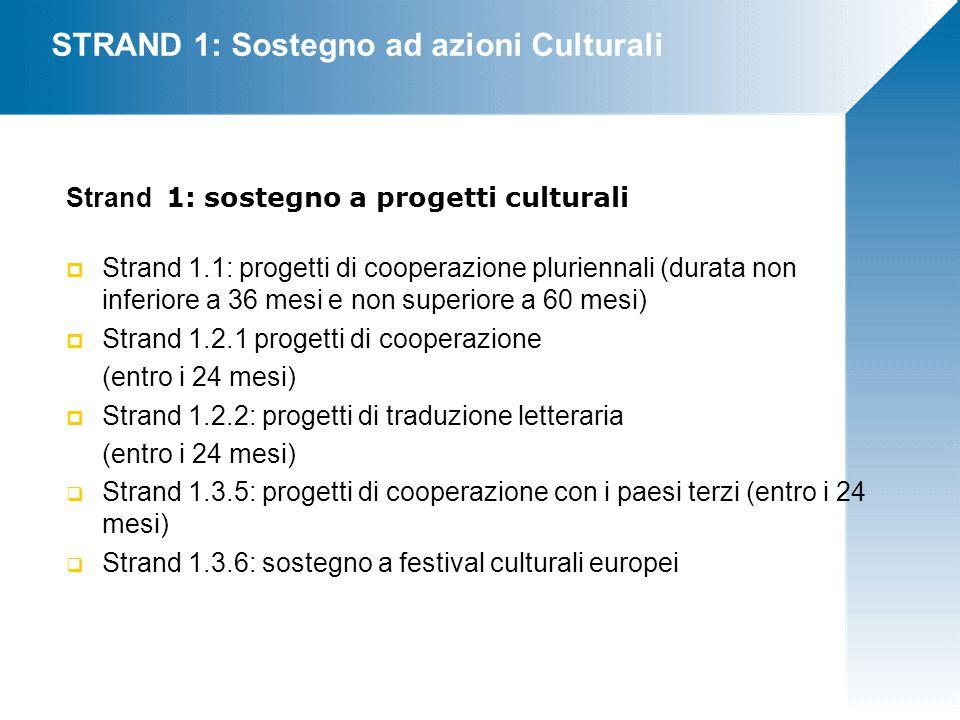STRAND 1: Sostegno ad azioni Culturali Strand 1: sostegno a progetti culturali  Strand 1.1: progetti di cooperazione pluriennali (durata non inferiore a 36 mesi e non superiore a 60 mesi)  Strand 1.2.1 progetti di cooperazione (entro i 24 mesi)  Strand 1.2.2: progetti di traduzione letteraria (entro i 24 mesi)  Strand 1.3.5: progetti di cooperazione con i paesi terzi (entro i 24 mesi)  Strand 1.3.6: sostegno a festival culturali europei
