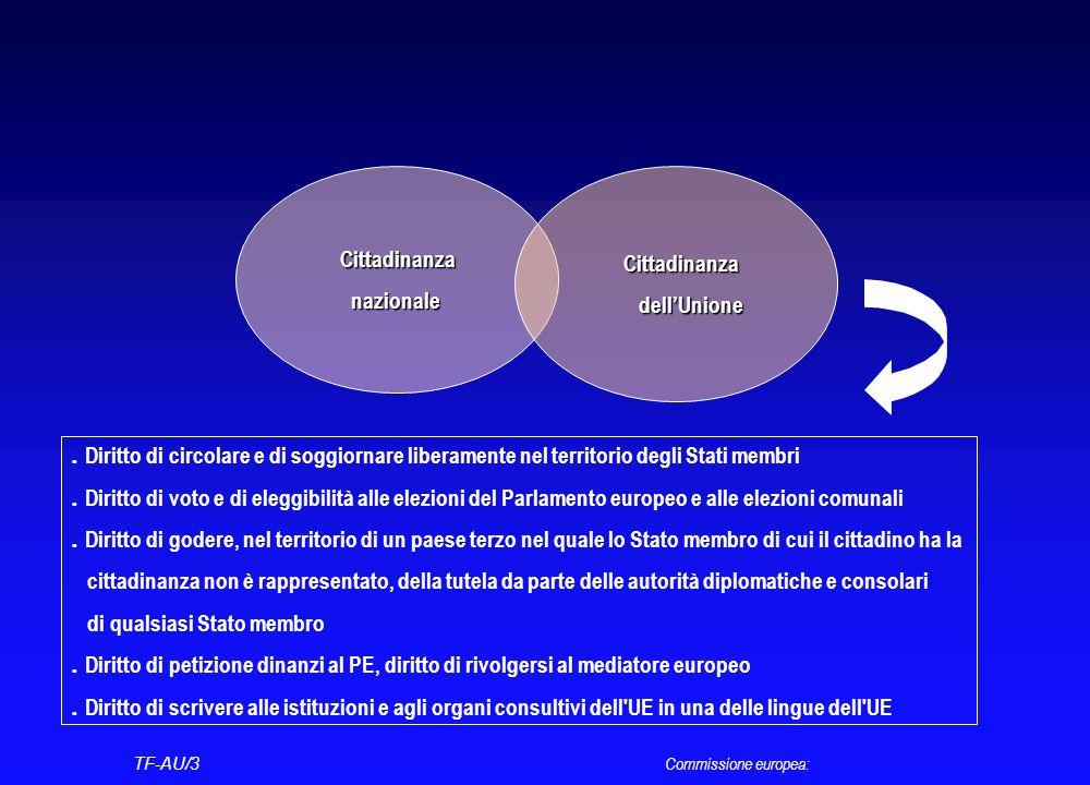 I diritti di cui usufruiscono i cittadini dell'Unione Diritto di voto e d'eleggibilità al Parlamento europeo Diritto di petizione dinanzi al Parlament
