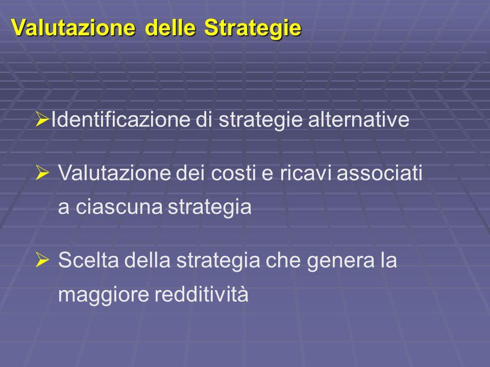 Valutazione delle Strategie  Identificazione di strategie alternative  Valutazione dei costi e ricavi associati a ciascuna strategia  Scelta della