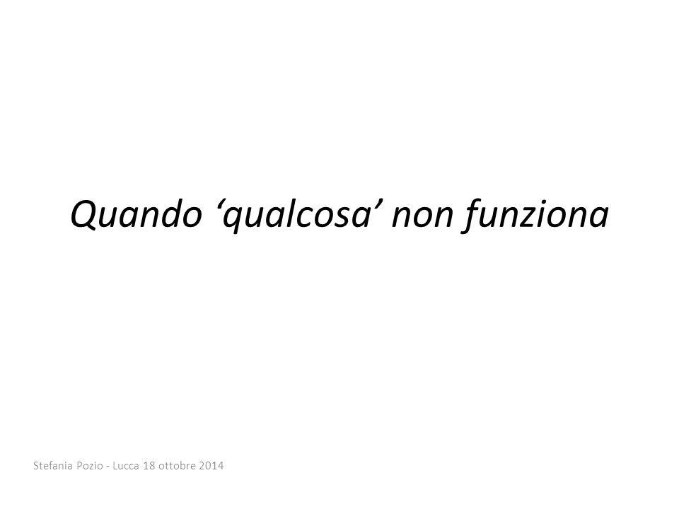 Quando 'qualcosa' non funziona Stefania Pozio - Lucca 18 ottobre 2014