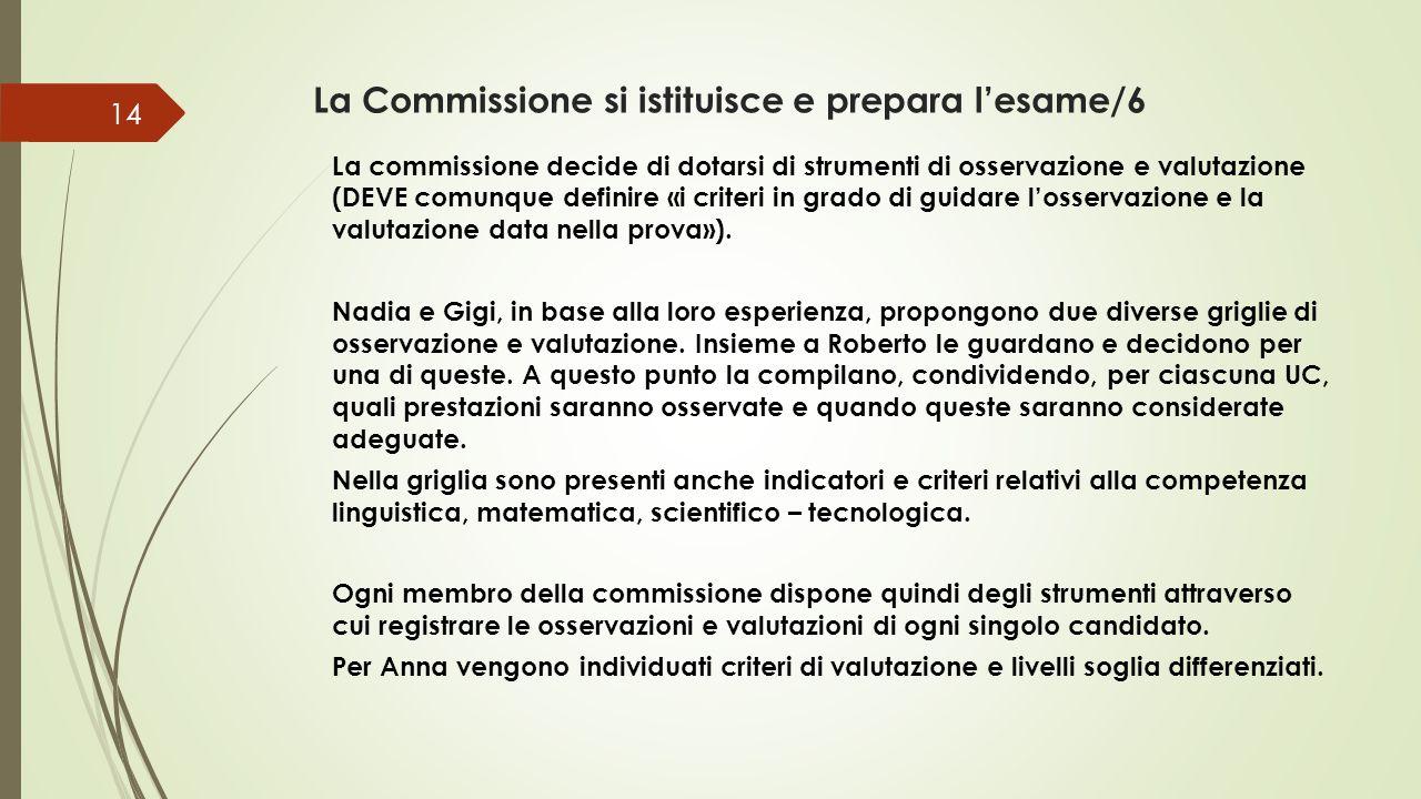 La Commissione si istituisce e prepara l'esame/6 La commissione decide di dotarsi di strumenti di osservazione e valutazione (DEVE comunque definire «i criteri in grado di guidare l'osservazione e la valutazione data nella prova»).