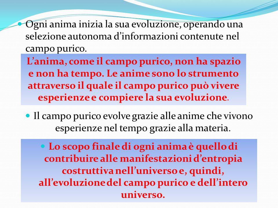 Ogni anima inizia la sua evoluzione, operando una selezione autonoma d'informazioni contenute nel campo purico. L'anima, come il campo purico, non ha
