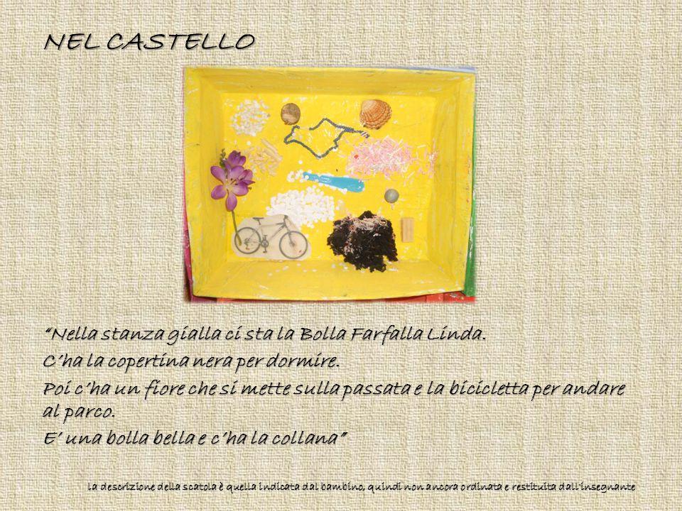"""NEL CASTELLO """"Nella stanza gialla ci sta la Bolla Farfalla Linda. C'ha la copertina nera per dormire. Poi c'ha un fiore che si mette sulla passata e l"""