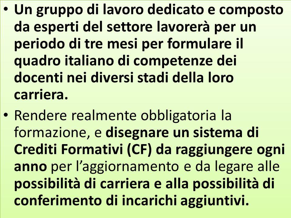 Un gruppo di lavoro dedicato e composto da esperti del settore lavorerà per un periodo di tre mesi per formulare il quadro italiano di competenze dei