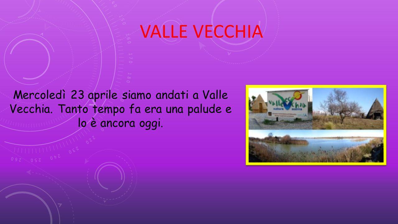 VALLE VECCHIA Mercoledì 23 aprile siamo andati a Valle Vecchia.