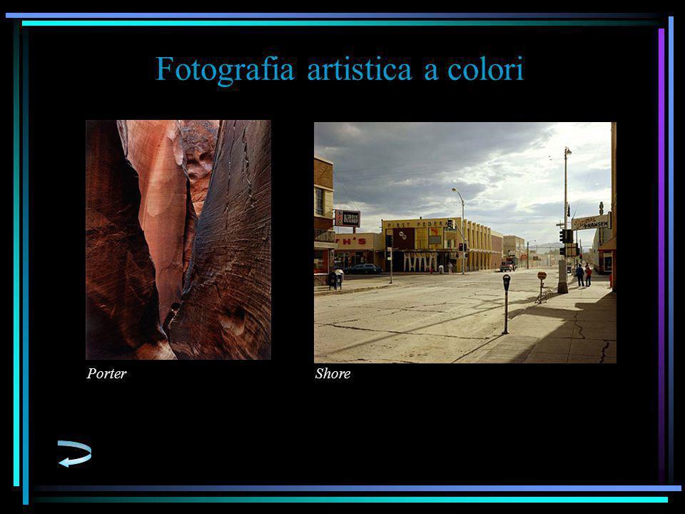 Fotografia artistica a colori ShorePorter
