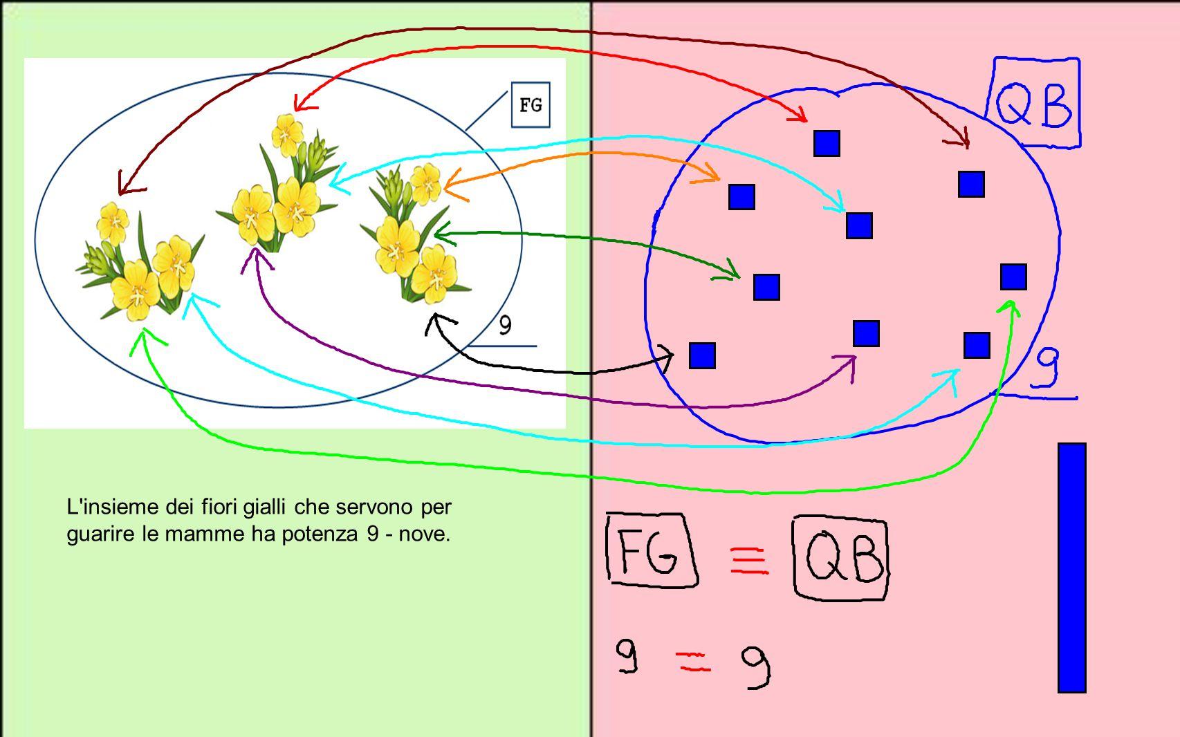 L insieme dei fiori gialli che servono per guarire le mamme ha potenza 9 - nove.