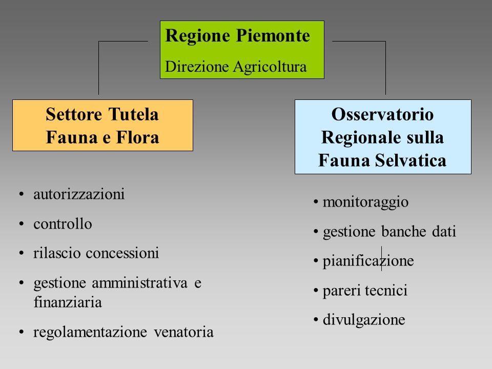 Regione Piemonte Direzione Agricoltura autorizzazioni controllo rilascio concessioni gestione amministrativa e finanziaria regolamentazione venatoria
