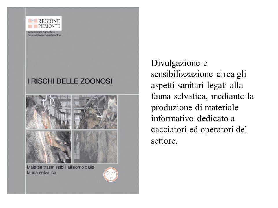 Divulgazione e sensibilizzazione circa gli aspetti sanitari legati alla fauna selvatica, mediante la produzione di materiale informativo dedicato a ca