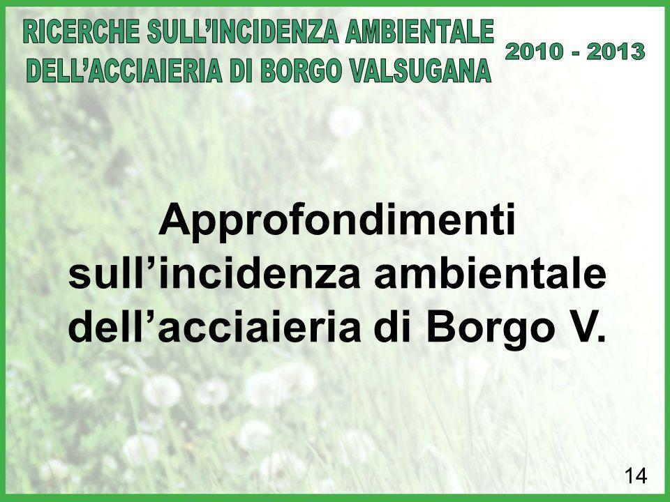 14 Approfondimenti sull'incidenza ambientale dell'acciaieria di Borgo V.
