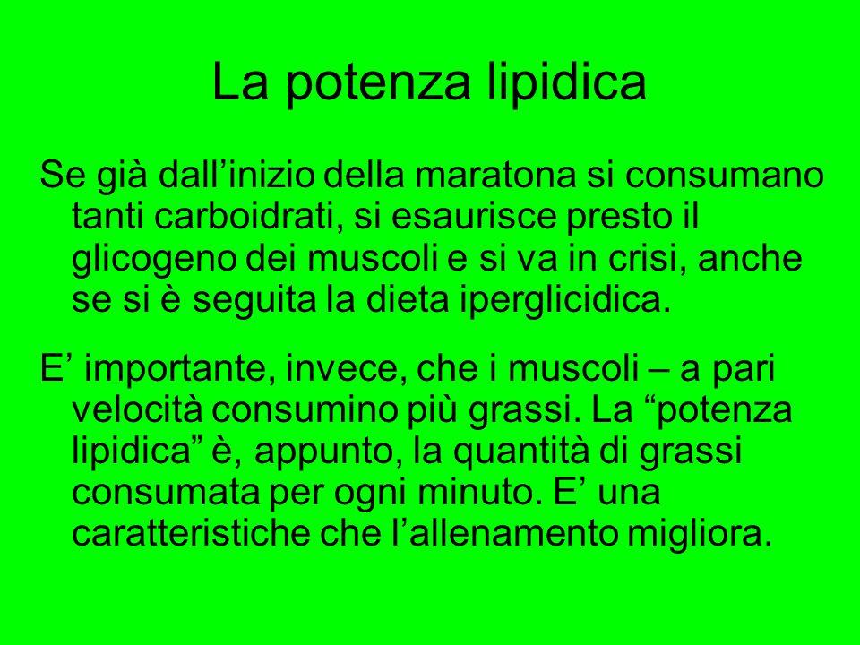 La potenza lipidica Se già dall'inizio della maratona si consumano tanti carboidrati, si esaurisce presto il glicogeno dei muscoli e si va in crisi, a