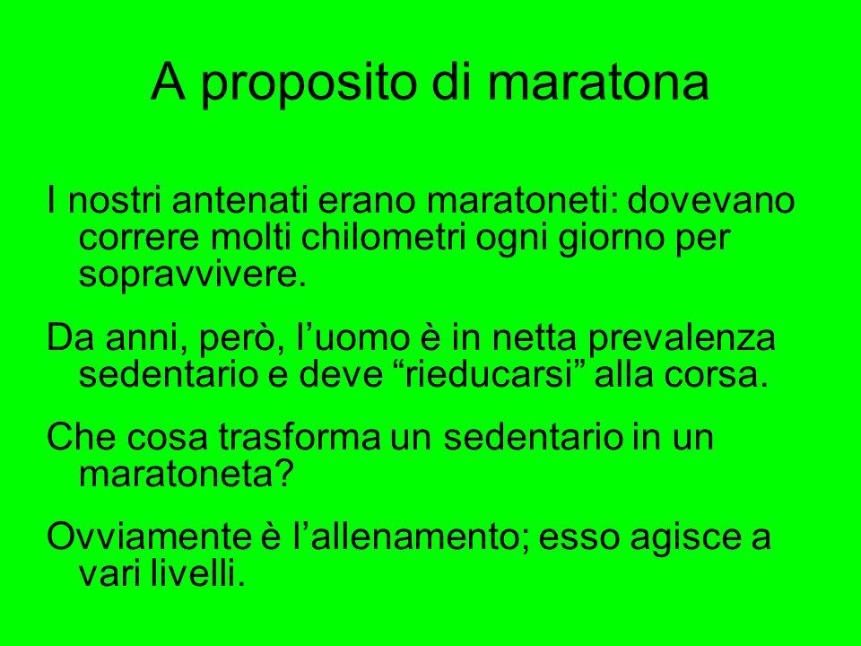 A proposito di maratona I nostri antenati erano maratoneti: dovevano correre molti chilometri ogni giorno per sopravvivere. Da anni, però, l'uomo è in