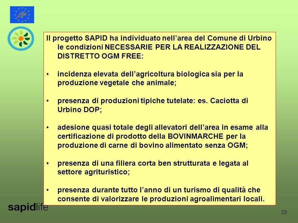 23 Il progetto SAPID ha individuato nell'area del Comune di Urbino le condizioni NECESSARIE PER LA REALIZZAZIONE DEL DISTRETTO OGM FREE: incidenza elevata dell'agricoltura biologica sia per la produzione vegetale che animale; presenza di produzioni tipiche tutelate: es.