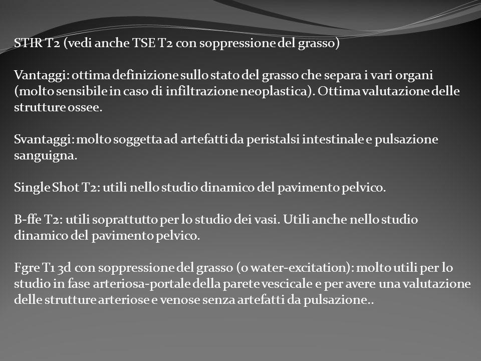 STIR T2 (vedi anche TSE T2 con soppressione del grasso) Vantaggi: ottima definizione sullo stato del grasso che separa i vari organi (molto sensibile