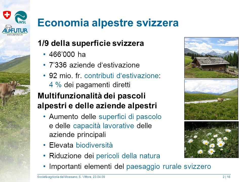 Società agricola del Moesano, S.