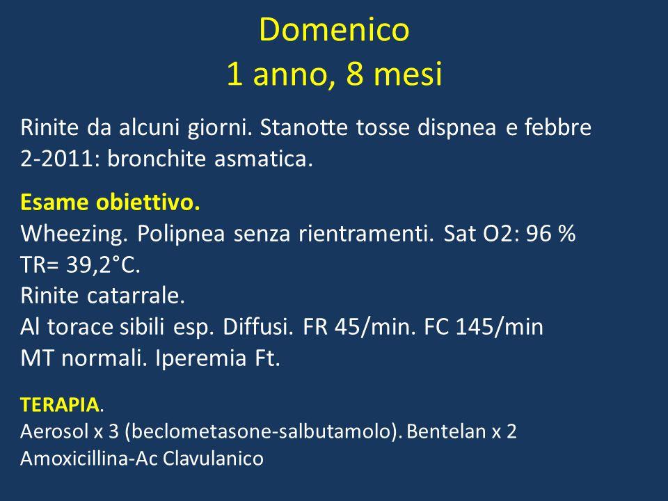 Domenico 1 anno, 8 mesi Rinite da alcuni giorni.