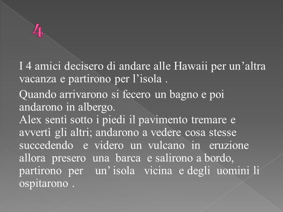 I 4 amici decisero di andare alle Hawaii per un'altra vacanza e partirono per l'isola.