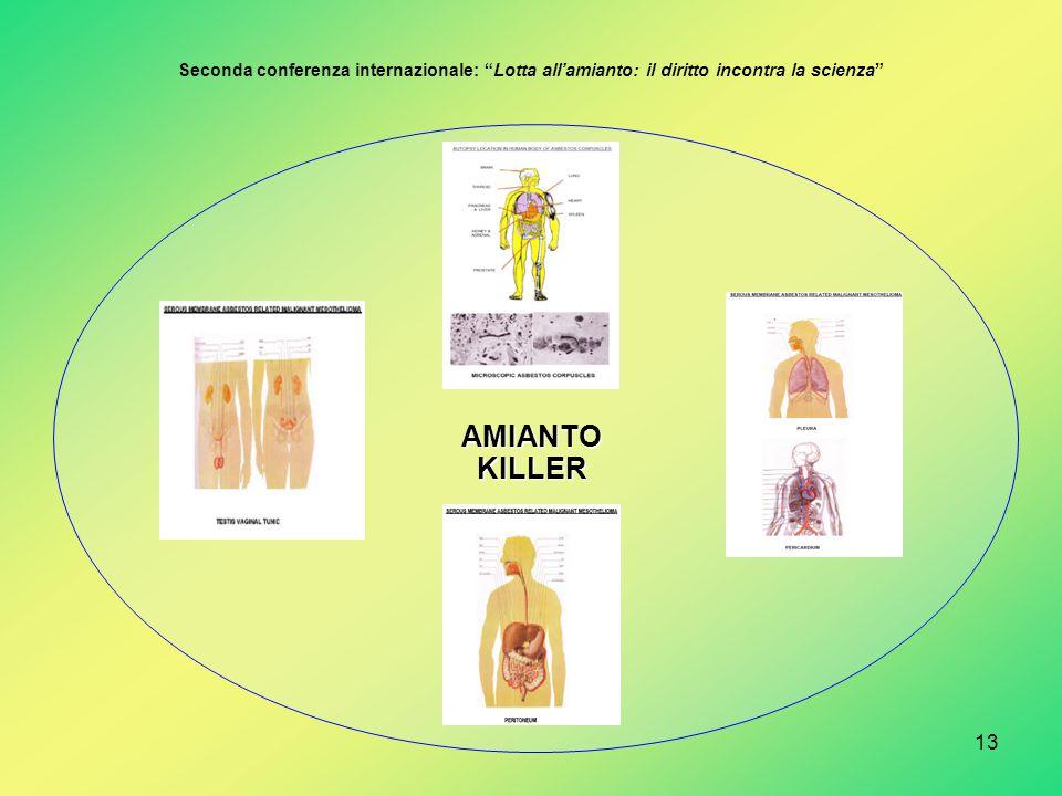 """13 AMIANTOKILLER Seconda conferenza internazionale: """"Lotta all'amianto: il diritto incontra la scienza"""""""