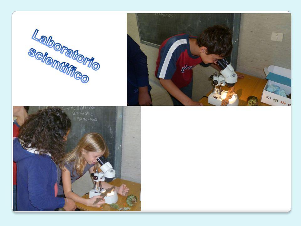 Classi seconde: Educazione alla salute: progetto latte con visita al Caseificio Valle Elvo e intervento Lega Tumori sul tabagismo.