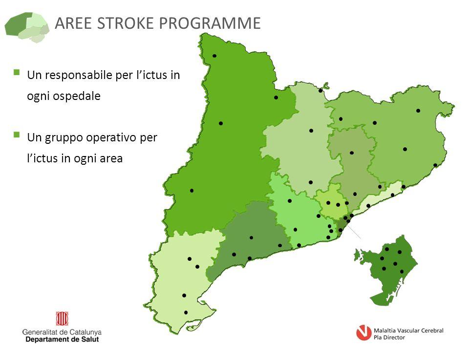 AREE STROKE PROGRAMME  Un responsabile per l'ictus in ogni ospedale  Un gruppo operativo per l'ictus in ogni area