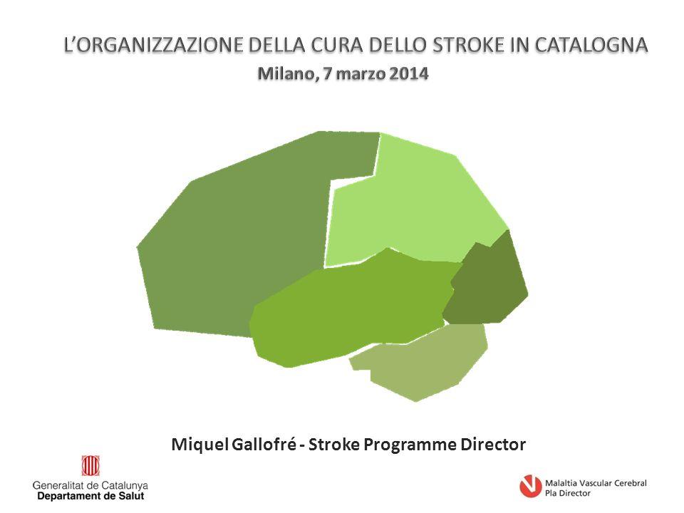 Miquel Gallofré - Stroke Programme Director