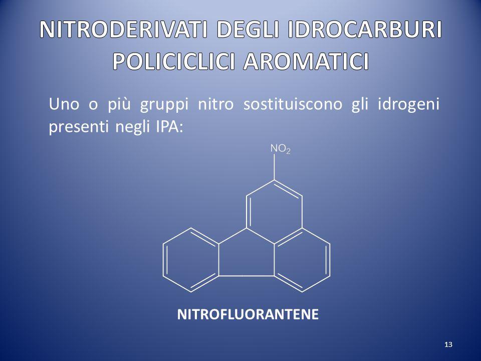 13 Uno o più gruppi nitro sostituiscono gli idrogeni presenti negli IPA: NITROFLUORANTENE