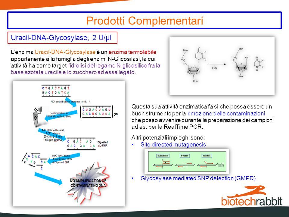 Uracil-DNA-Glycosylase, 2 U/µl Prodotti Complementari L'enzima Uracil-DNA-Glycosylase è un enzima termolabile appartenente alla famiglia degli enzimi N-Glicosilasi, la cui attività ha come target l'idrolisi del legame N-glicosilico fra la base azotata uracile e lo zucchero ad essa legato.