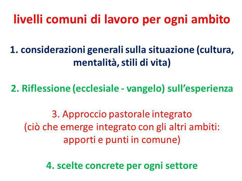 livelli comuni di lavoro per ogni ambito 1. considerazioni generali sulla situazione (cultura, mentalità, stili di vita) 2. Riflessione (ecclesiale -