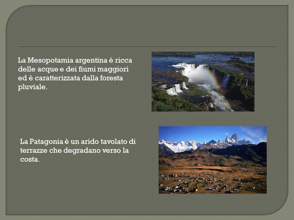 Il termine pampas riferisce alle vaste pianure fertili dell'Argentina oltre alle attività agricole, l'attività predominante è l'allevamento, specialme