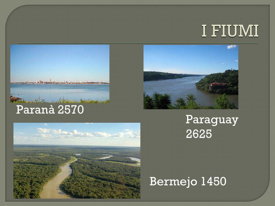 La Mesopotamia argentina è ricca delle acque e dei fiumi maggiori ed è caratterizzata dalla foresta pluviale. La Patagonia è un arido tavolato di terr