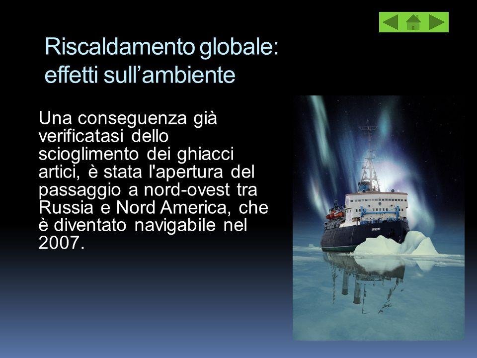Riscaldamento globale: effetti sull'ambiente Una conseguenza già verificatasi dello scioglimento dei ghiacci artici, è stata l'apertura del passaggio