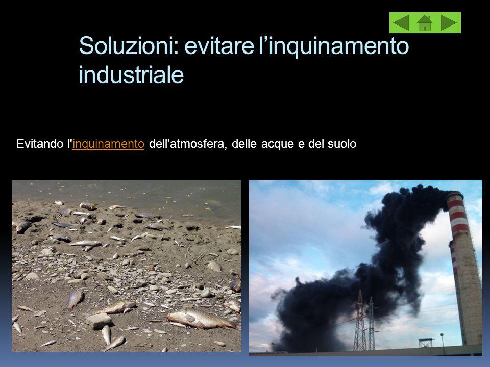 Soluzioni: evitare l'inquinamento industriale Evitando l'inquinamento dell'atmosfera, delle acque e del suoloinquinamento