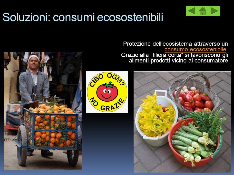 """Soluzioni: consumi ecosostenibili Protezione dell'ecosistema attraverso un consumo ecosostenibile. consumo ecosostenibile Grazie alla """"filiera corta"""""""