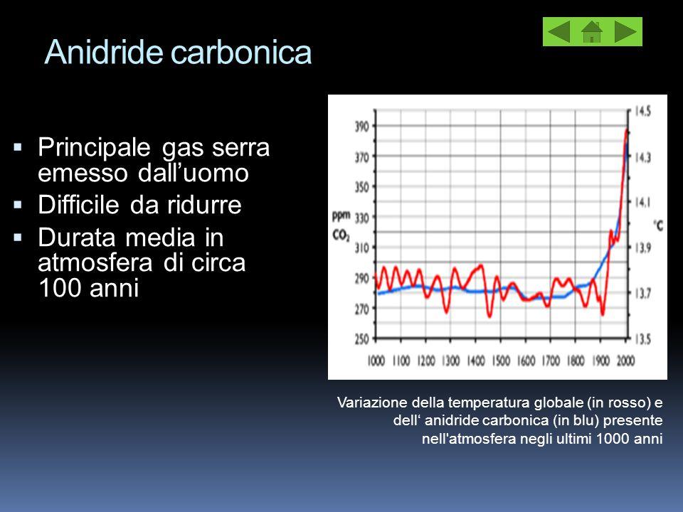 Anidride carbonica  Principale gas serra emesso dall'uomo  Difficile da ridurre  Durata media in atmosfera di circa 100 anni Variazione della tempe