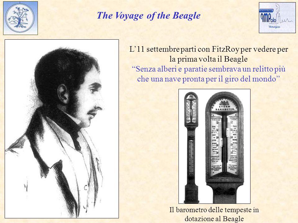 The Voyage of the Beagle L'11 settembre parti con FitzRoy per vedere per la prima volta il Beagle Senza alberi e paratie sembrava un relitto più che una nave pronta per il giro del mondo Il barometro delle tempeste in dotazione al Beagle