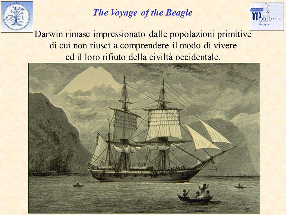 The Voyage of the Beagle Darwin rimase impressionato dalle popolazioni primitive di cui non riuscì a comprendere il modo di vivere ed il loro rifiuto della civiltà occidentale.