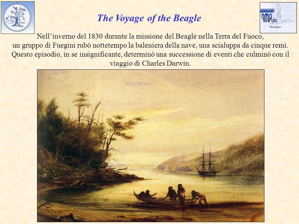 The Voyage of the Beagle Nell'inverno del 1830 durante la missione del Beagle nella Terra del Fuoco, un gruppo di Fuegini rubò nottetempo la baleniera della nave, una scialuppa da cinque remi.