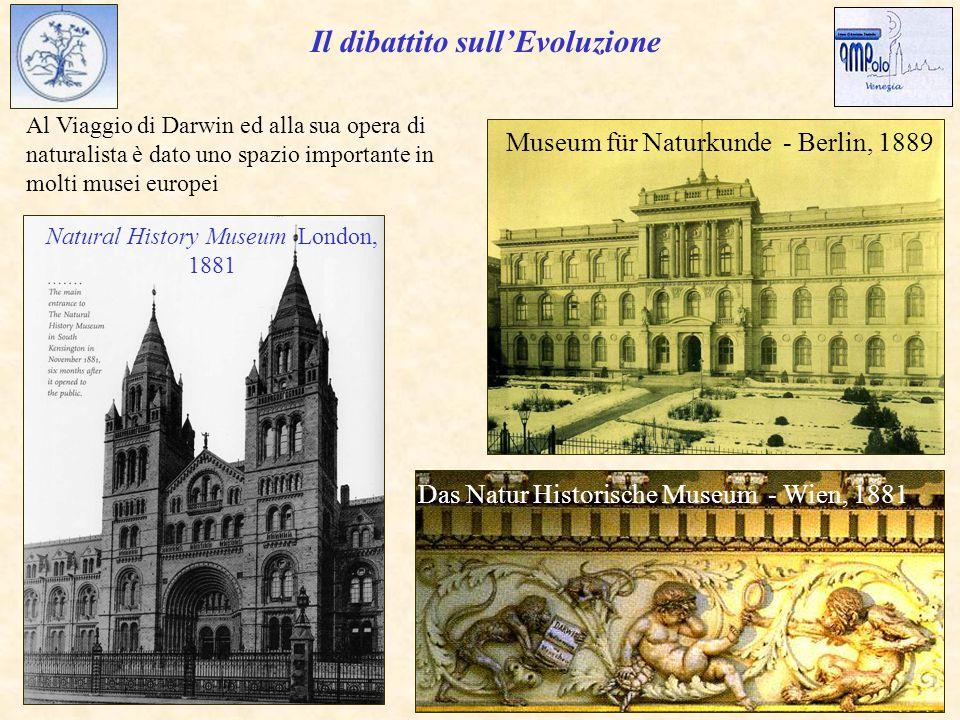 Museum für Naturkunde - Berlin, 1889 Al Viaggio di Darwin ed alla sua opera di naturalista è dato uno spazio importante in molti musei europei Das Natur Historische Museum - Wien, 1881 Natural History Museum London, 1881