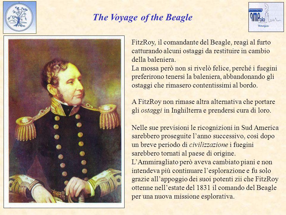 The Voyage of the Beagle FitzRoy, il comandante del Beagle, reagì al furto catturando alcuni ostaggi da restituire in cambio della baleniera.