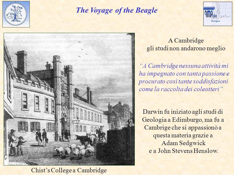 The Voyage of the Beagle Chist's College a Cambridge Darwin fu iniziato agli studi di Geologia a Edimburgo, ma fu a Cambrige che si appassionò a questa materia grazie a Adam Sedgwick e a John Stevens Henslow.